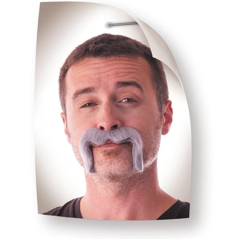 Moustache Watson grise