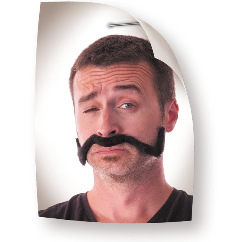 Moustache chinoise noire
